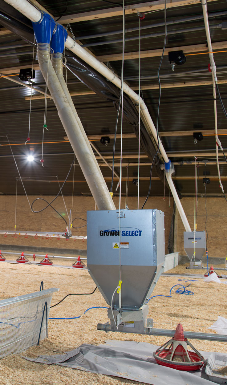 GrowerSELECT® Grow-Flex™ fill systems convey feed from the bulk feed bins outside into the barn, supplying each feed line hopper with continuously available feed. The automated system is triggered by hopper level switches installed in each poultry feed line hopper.