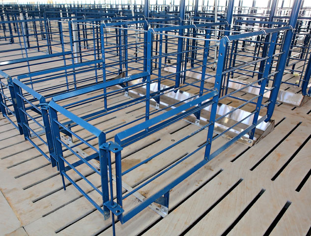 Hog Slat's gestation stall design has been improved, installed and trusted by pork producers across the nation for over 30 years.