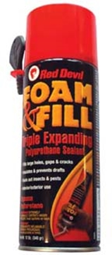Picture of 12 oz Touch N Foam Can