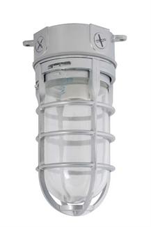Picture of Incandescent Bulb Vapor Tight Ceiling Fixture