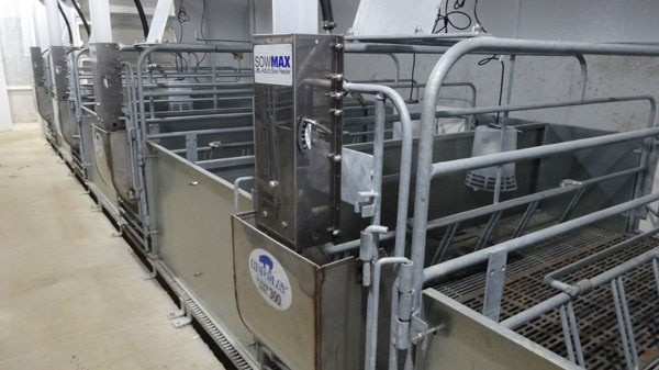 Galvanized farrowing crate with SowMAX Ad Lib dispensers.
