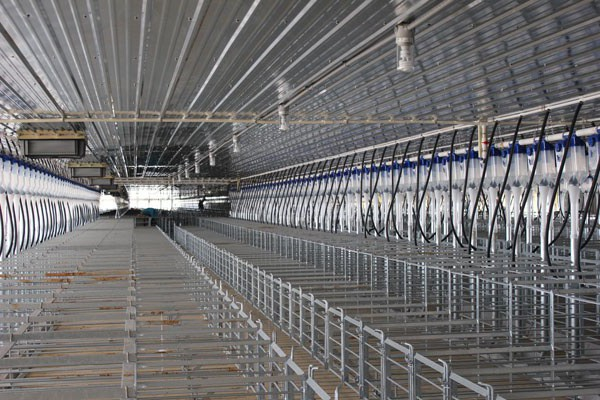 Galvanized gestation stalls