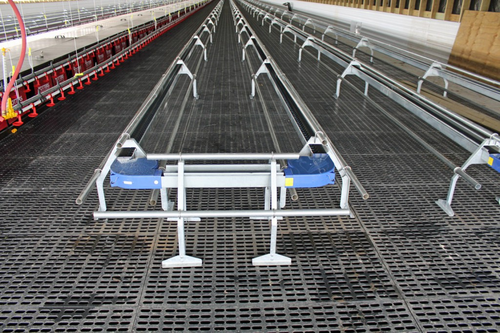 GrowerSELECT chain feeder with additional roost bars