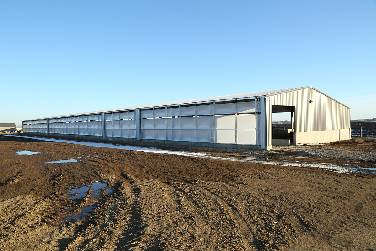 cattle-finishing-barn-front-angle-view.jpg