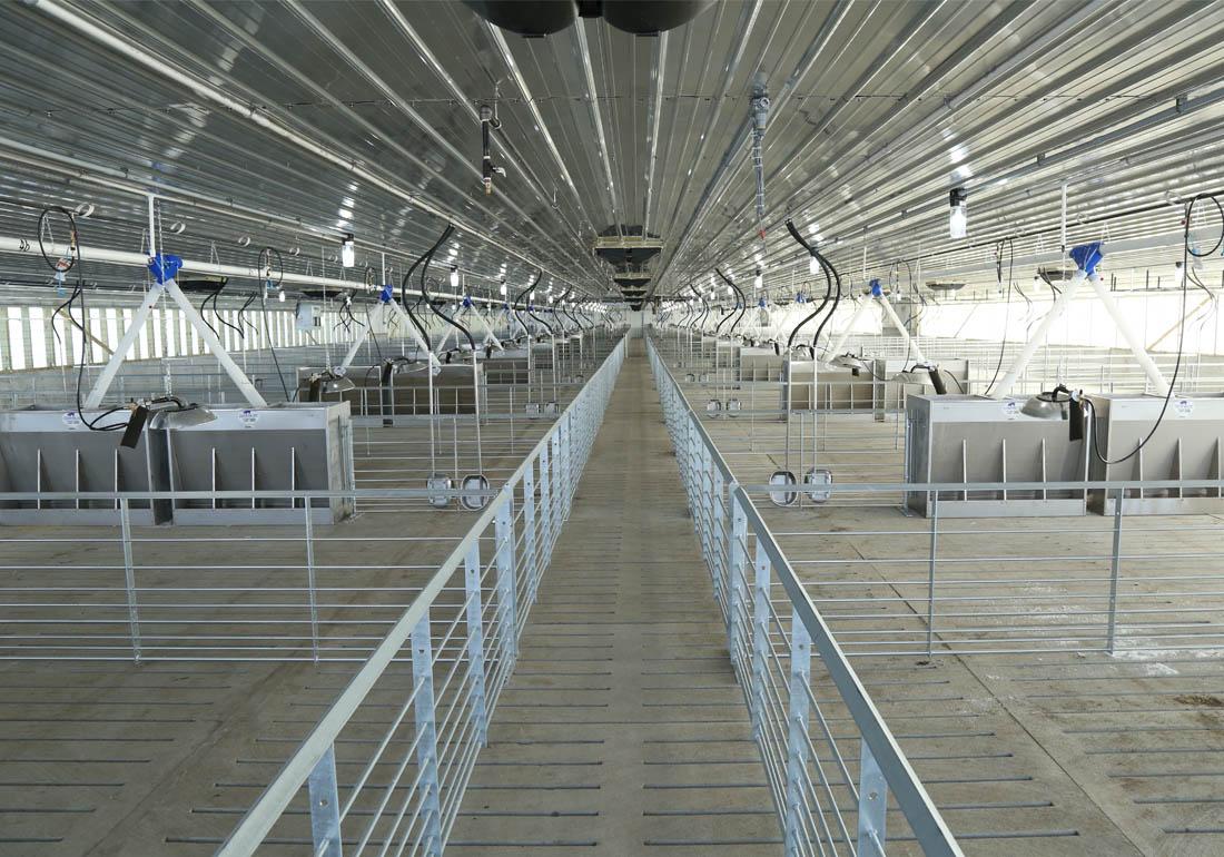2,400 head wean to finish hog farm constructed by Hog Slat.