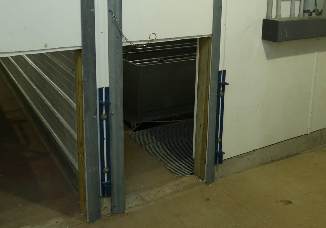 Vertical farrowing room doors for pigs