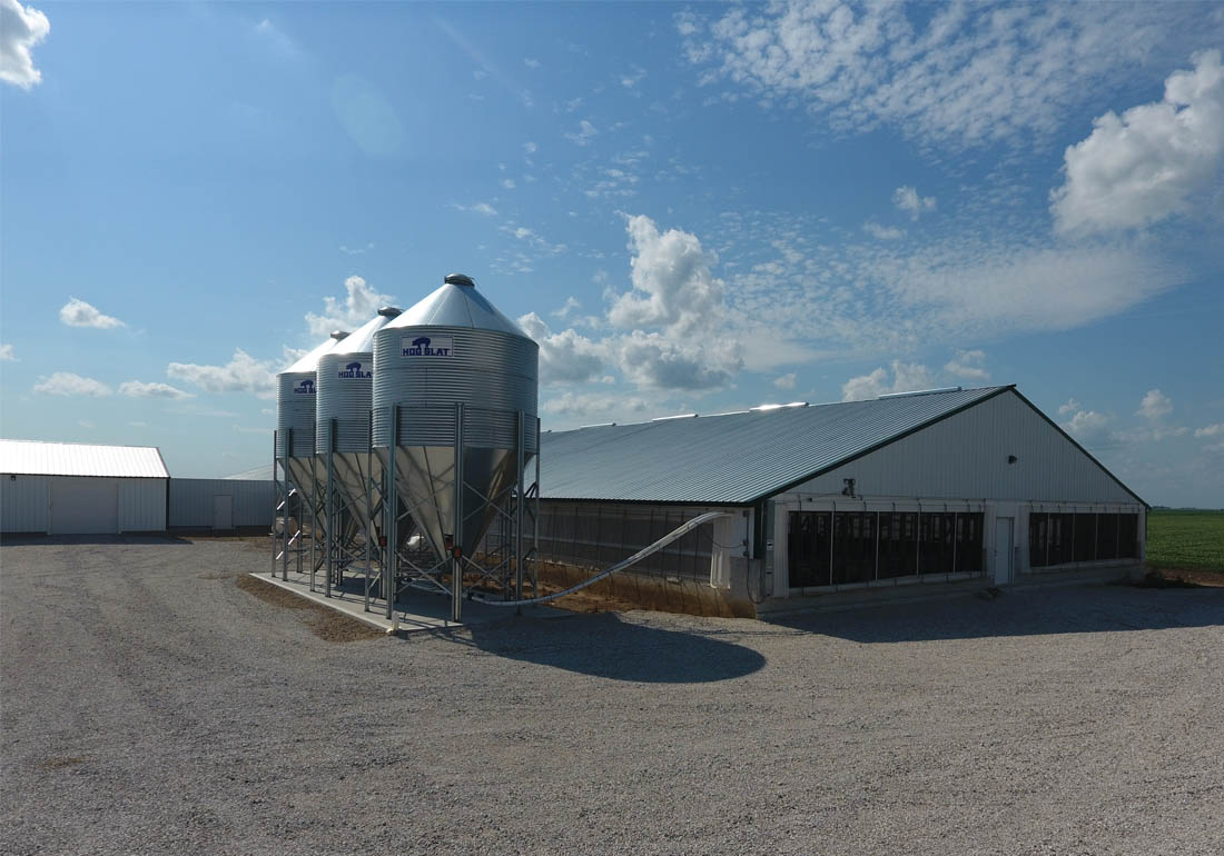 Three Hog Slat bulk feed bins supply each barn's feeding system.
