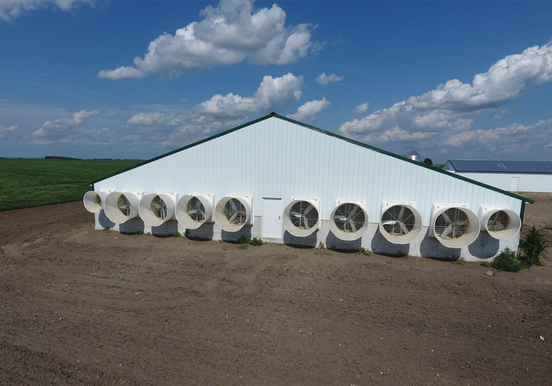 GrowerSELECT AirStorm fiberglass exhaust fans ventilate the barns.