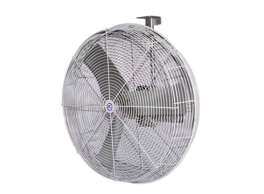Hog Slat Fan Related Keywords & Suggestions - Hog Slat Fan Long Tail
