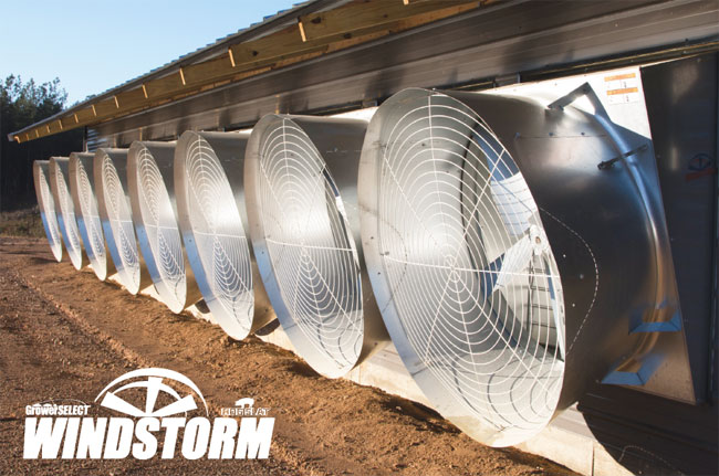 Hog Slat GrowerSELECT WindStorm Fan Brochure Image