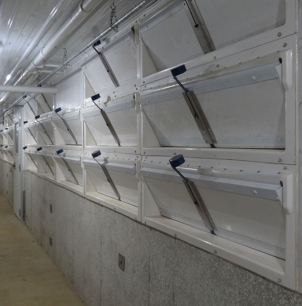 Banks of Hog Slat single wall air inlets can be installed for each farrowing room in a barn; allowing producers to customize and quickly adjust the incoming air flow for each room individually.