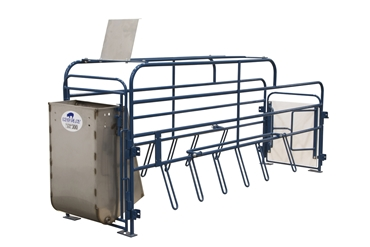 Picture for category Swine Steel Equipment