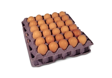 Picture of 30 Egg Cardboard Flats
