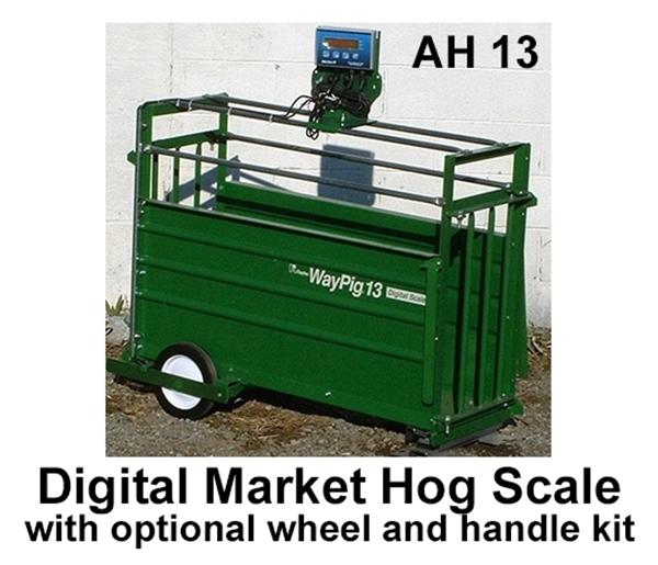WayPig® 13 Market Hog Digital Scale